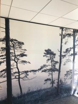 Be chroma  - decor mural panoramique
